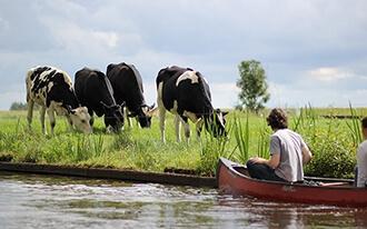 שמורות טבע בהולנד