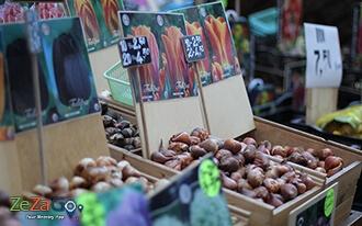 שוק הפרחים הצף - Bloemenmarkt