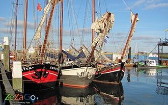 האי טסל - Texel Island