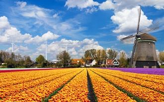 6 טיפים שיהפכו את החופשה שלכם באמסטרדם למושלמת