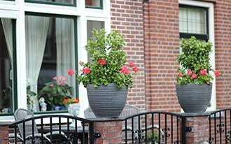 דירות להשכרה באמסטרדם - Amsterdam Vacation House