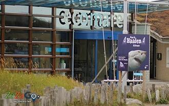 עולם הטבע המופלא של טסל - Ecomare Texel